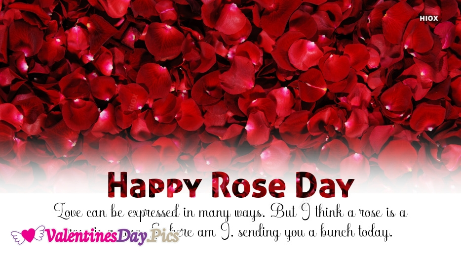 Love Can Be Expressed In Many Ways. But I Think A Rose is A Rose