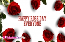Happy Rose Day Everyone